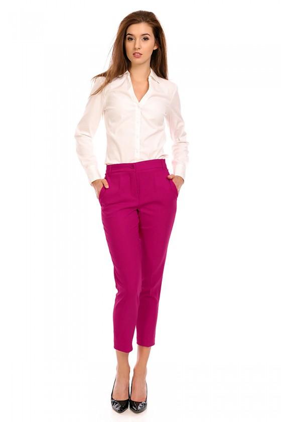 Women trousers model 118961...